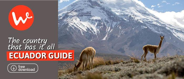 The Ecuador Guide