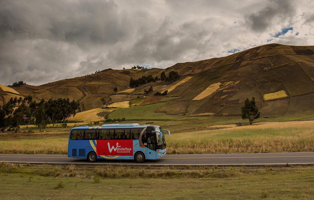 Wanderbus vs Public Transport