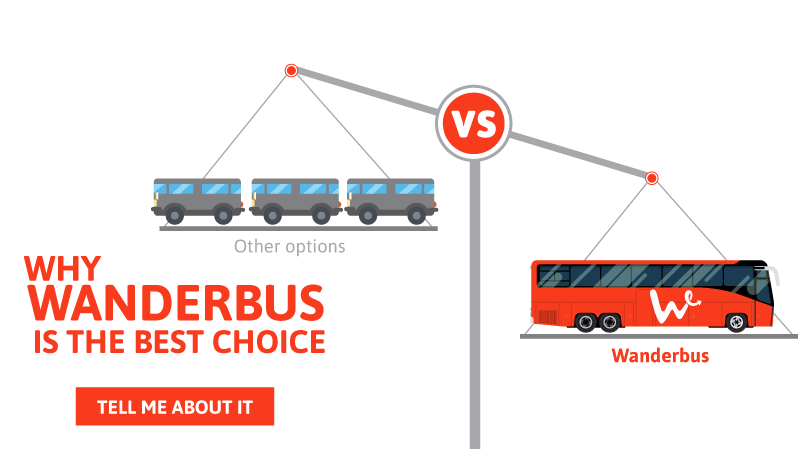 Why Wanderbus is the best choice