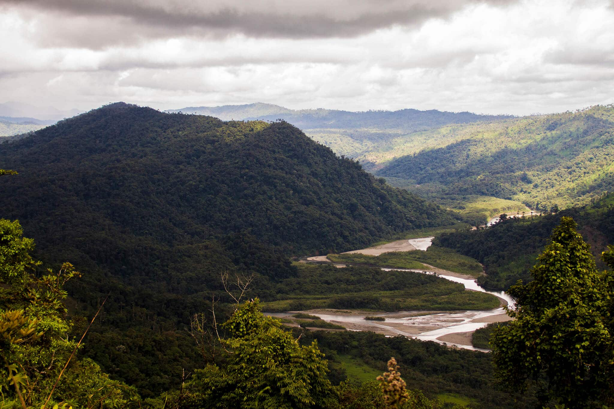 How to get to the amazon rainforest from Quito