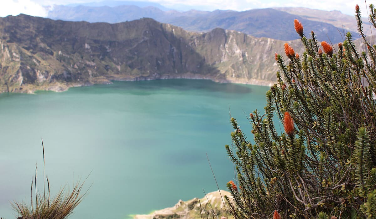 Visit Quilotoa and Cotopaxi in one day