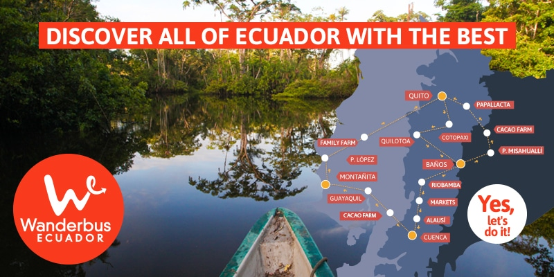 Ecuador's Amazon Experience