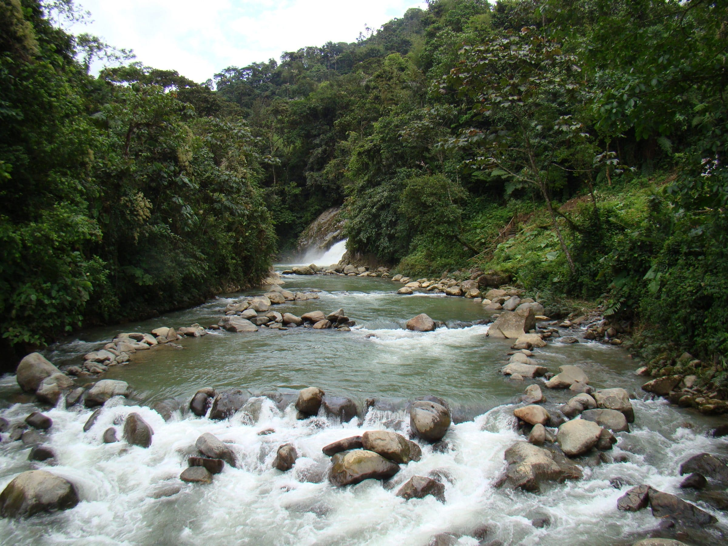 Mindo Cloud Forest Reserve is a great ecotourism destination