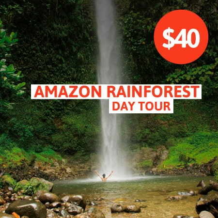 Amazon Rainforest Day Tour