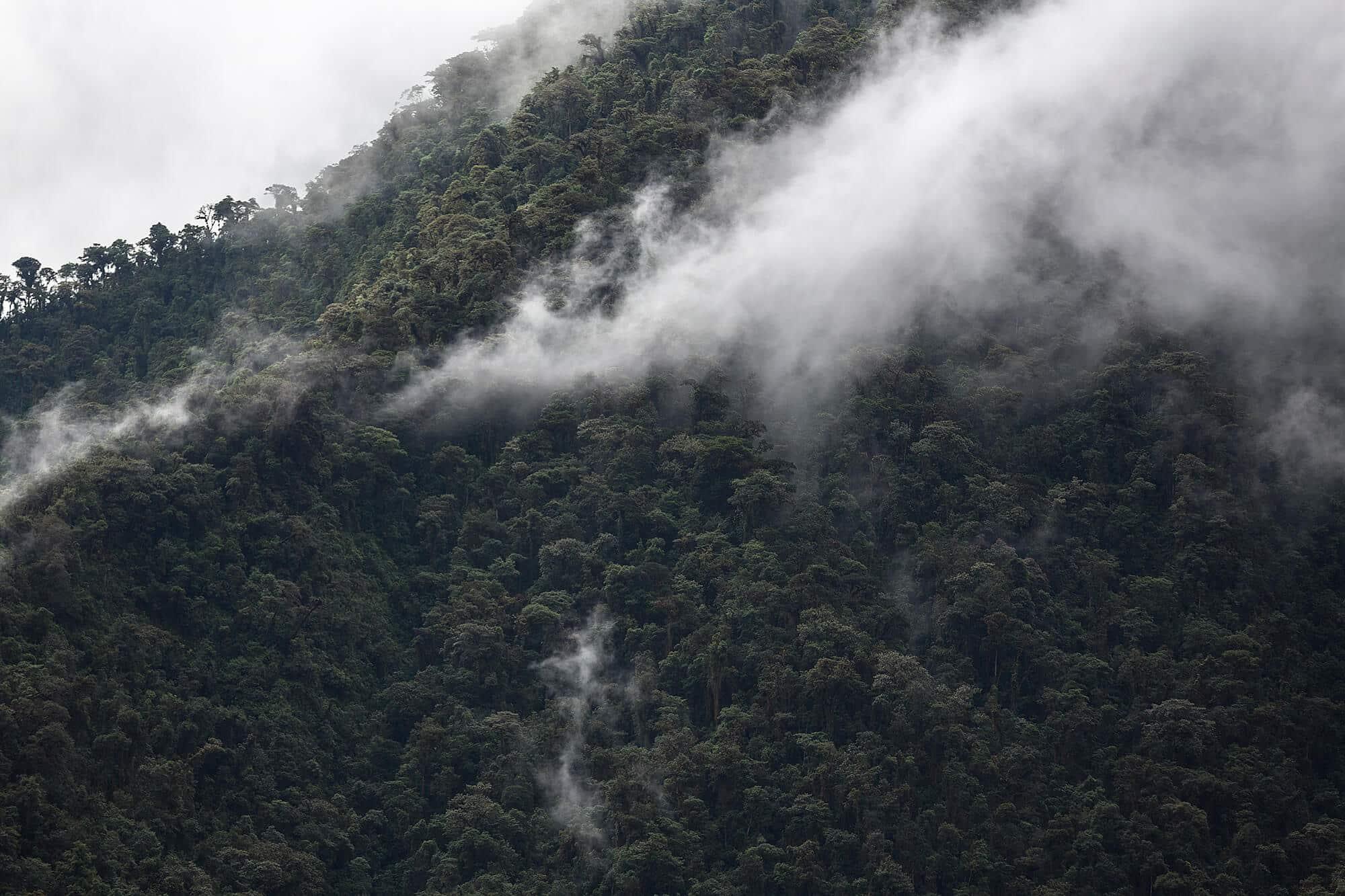 volcanoes and the Ecuadorian jungle