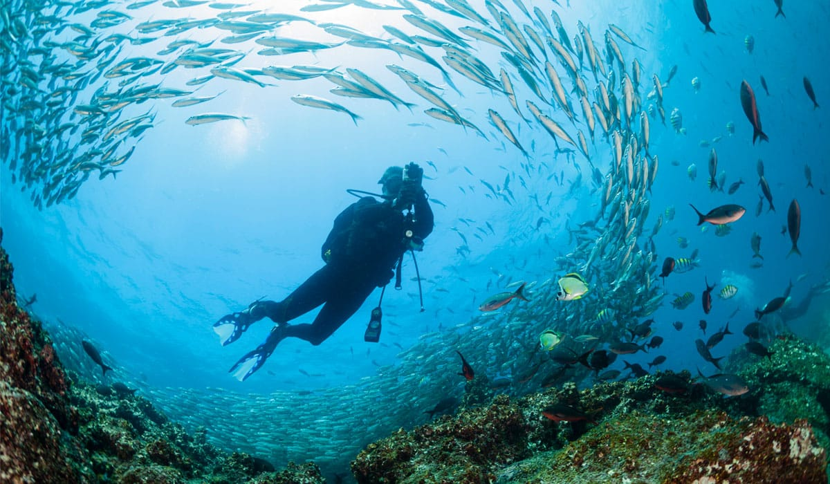 Diving in Ecuador